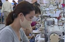 岘港市各工业区改善工人的工作环境