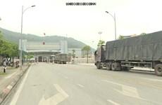 越南对中国出口活动将重见起色