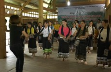 清化省努力保护与弘扬傣族文化特色