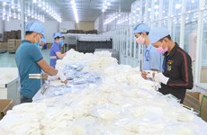 越南口罩出口:潜力与风险并存