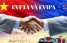 意大利媒体:越南是欧盟进军东盟市场的窗口