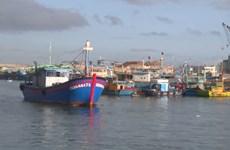 亚洲外交事务网站:越南努力为渔业解除黄牌警告
