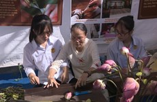 越南藕丝布引起外媒关注与盛赞