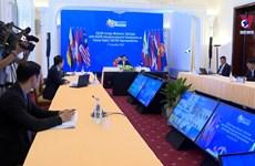 日本驻东盟大使高度评价越南的引领作用