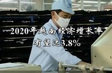 2020年越南经济增长率有望达3.8%