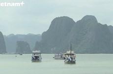 越南下龙湾跻身全球最美50个自然奇观榜单