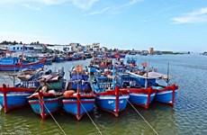 组图:EVFTA为越南水产业创造巨大机会
