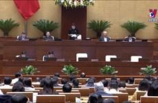 越南第十四届国会第十次会议:政府成员接受公开质询