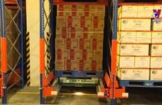 越南企业主动制定年货生产计划  确保货丰价稳