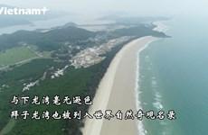广宁省拜子龙湾:令人惊叹的原始之美