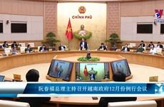 阮春福总理主持召开越南政府12月份例行会议