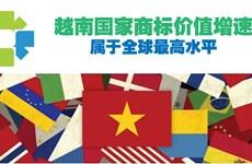 图表新闻:越南国家商标价值增速属于全球最高水平