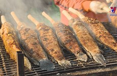 越南财神节独特供奉品——烤鳢鱼