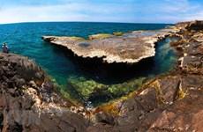 组图:走进主山世界生物圈保护区,领略自然之美