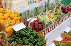 春节购物需求拉动影响全国CPI上涨0.8%