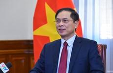 越南外交部长:海外越南人侨务工作是越南党和国家外交政策支柱