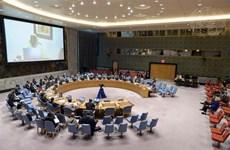 越南与联合国安理会:越南强调维和行动转型过渡进程需要符合每个国家的情况