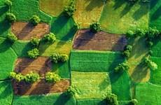 从高空俯瞰越南:青山绿水 美景无边(组图)
