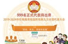 图表新闻:越南祖国阵线推进工作方式改革 发挥民族大团结力量