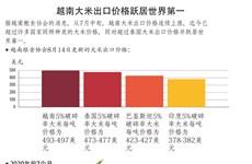 图表新闻:越南大米出口价格跃居世界第一