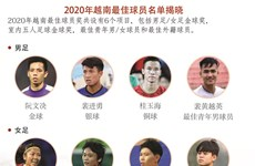 图表新闻:2020年越南最佳球员名单揭晓