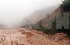 越南中部地区全面投入灾后重建工作