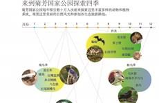 图表新闻:来到菊芳国家公园探索四季