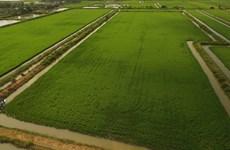 [MegaStory] 开展新农村建设10年后越南农村面貌焕然一新