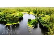 """越南努力保护湿地生物多样性的""""摇篮"""""""