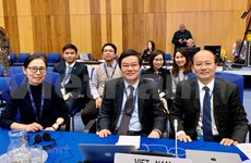 越南积极参与核安全合作