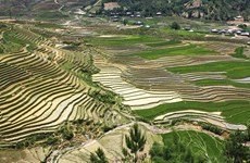 木江界注水季节:西北山林的壁画