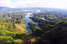 2020年世界环境日:努力传播绿色文明  打造绿色未来