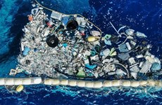 越南将建立国际海洋塑料垃圾中心
