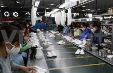 疫情期间越南内资企业出口成为贸易活动的亮点