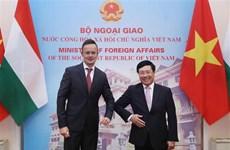 越南与匈牙利两国外长举行会谈