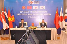 ASEAN+3就防控新冠肺炎疫情和经济复苏措施进行讨论