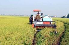 2020年前9个月农业对永福省经济增长的贡献率为0.13%