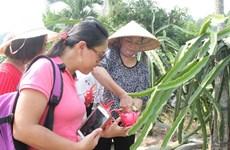 平顺省大力促进与可持续农业相结合的旅游产品开发工作  