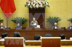 越南国会主席阮氏金银:创造新动力 实现国家可持续发展
