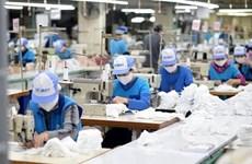 2020年第四季度越南劳动力市场有一定起色