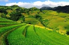 越南西北山林令人痴迷的木江界