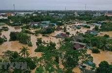 世界气候学家深入研究越南的严重暴雨水灾