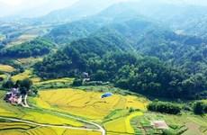 探索广宁省平辽边境地区的荒野之美