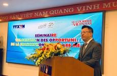 增强在法语国家组织中的地位为越南带来更多机会