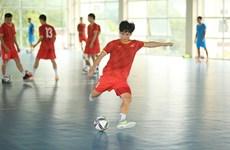 国际足联在2021年世界杯前夕对越南五人制足球队给予高度评价