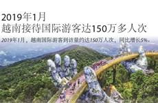 图表新闻:2019年1月越南接待国际游客达150万多人次