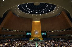 越南以高票当选联合国安理会非常任理事国(组图)