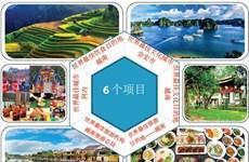 图表新闻:越南获得世界旅游大奖6个奖项的提名