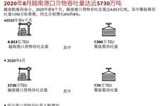 图表新闻:2020年8月越南港口货物吞吐量达近5730万吨