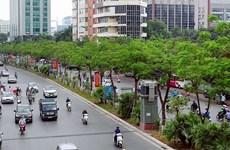 2021至2025年阶段种植10亿棵树提案获批